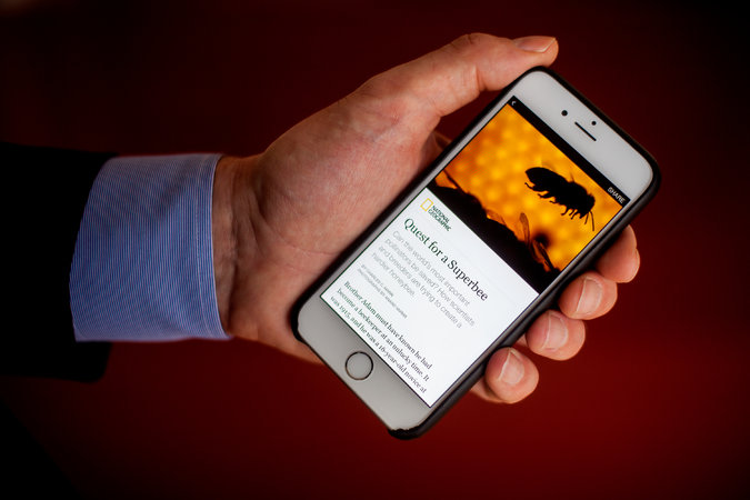 Nuevo Instant Articles de Facebook Multiplicalia