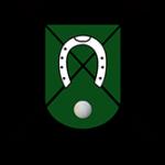Diseñamos la web de Federación andaluza de Polo
