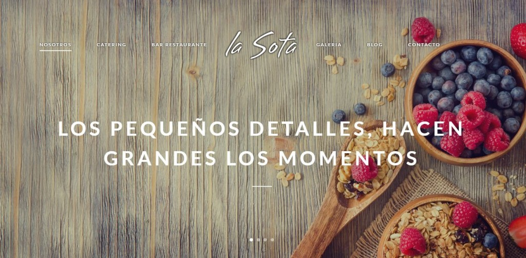 diseño web en Madrid para La Sota