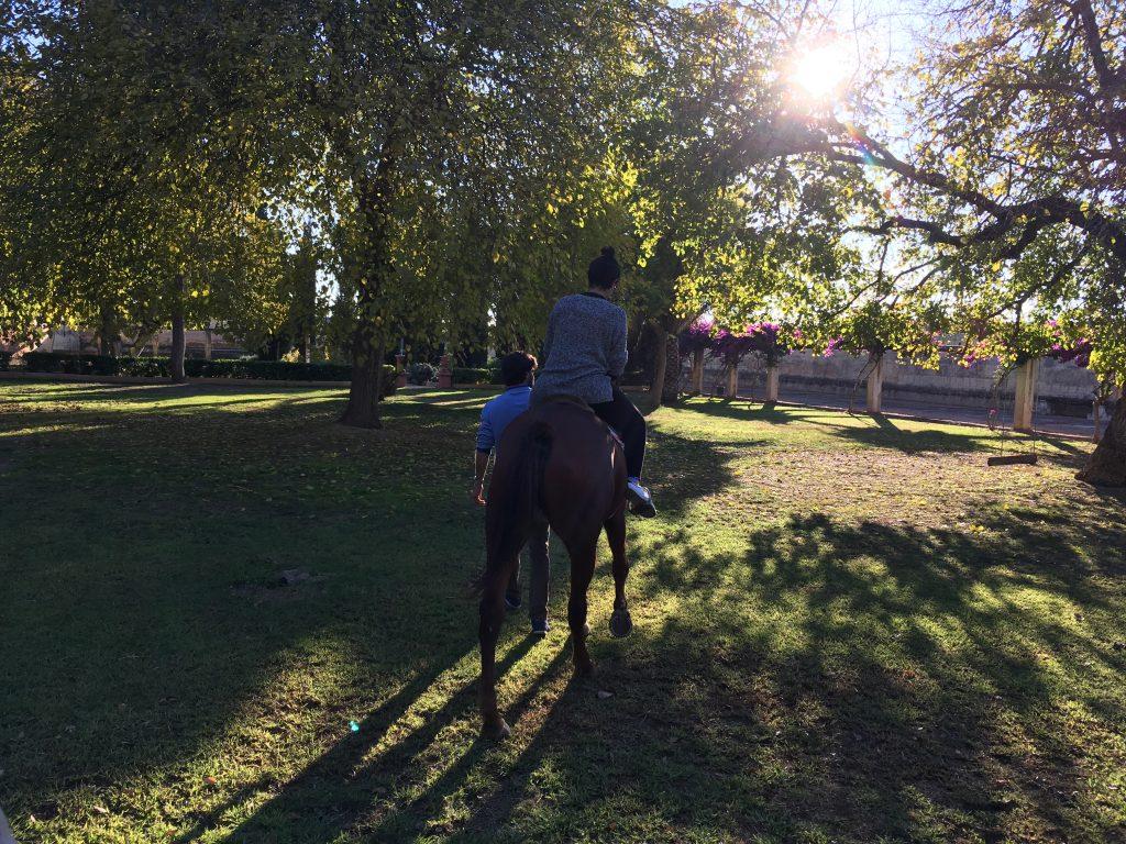 montando a caballo navidad en multiplicalia