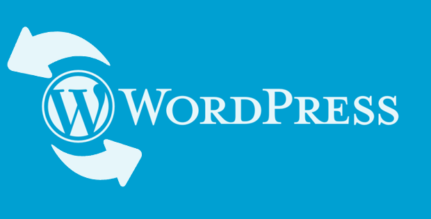 actualizacion de wordpress