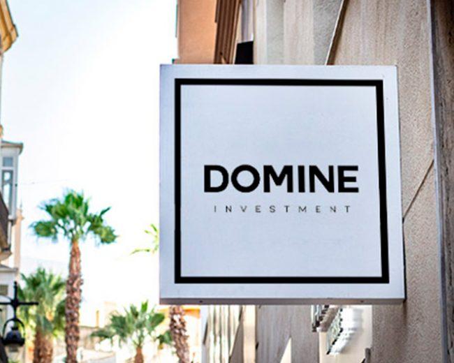 Diseño de logotipo para Domine