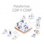 CDP y CDXP, ¿por qué debes implementarlas?