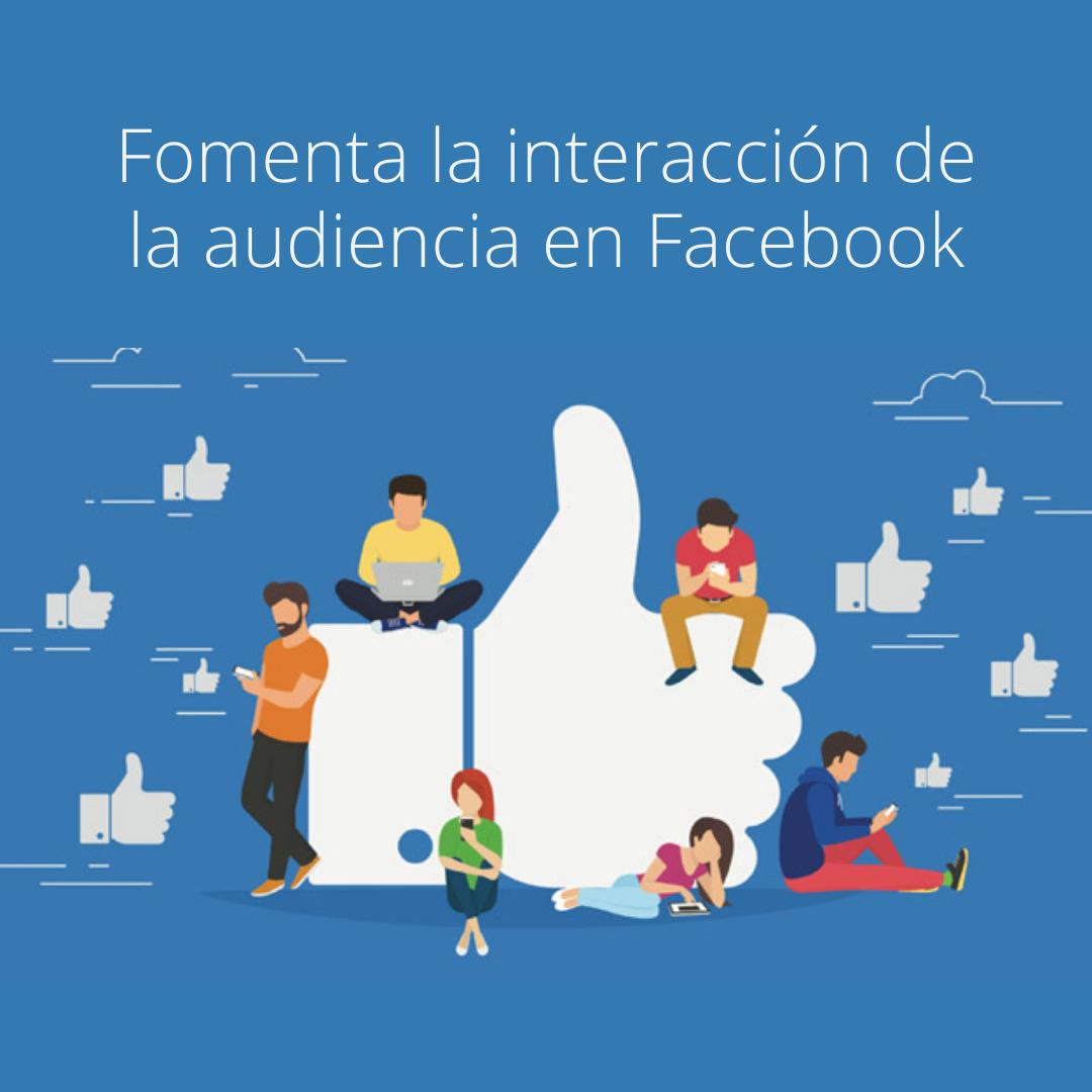 Audiencia en Facebook